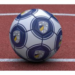 "Mini - Fußball ""Logo"" (Gr.1)"
